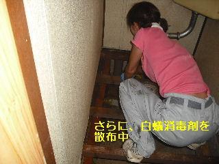 トイレ・白蟻緊急工事_f0031037_21302796.jpg