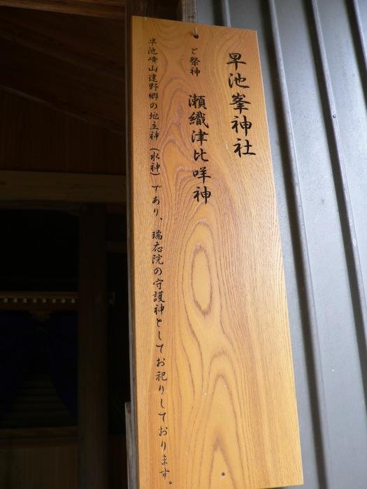 ウツギ_d0001843_9523680.jpg