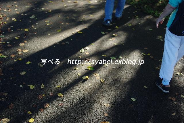 c0153764_20351042.jpg