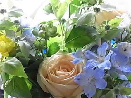 バラとデルフィニウムのブーケ♪_b0105897_2581319.jpg