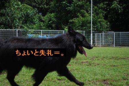 f0109202_18471230.jpg