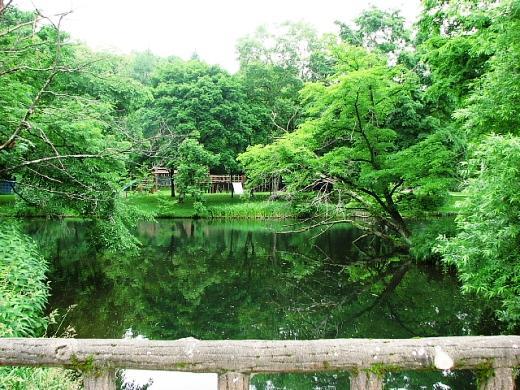 2010年7月14日(水):6年目にして達成_e0062415_19184124.jpg