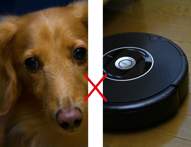 鉄之介 VS Roomba!!_e0166336_1856176.jpg
