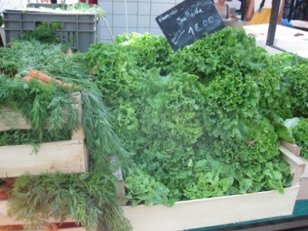 庭のインゲン、絹サヤ、夏野菜。_d0156457_8193975.jpg