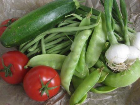 庭のインゲン、絹サヤ、夏野菜。_d0156457_892842.jpg