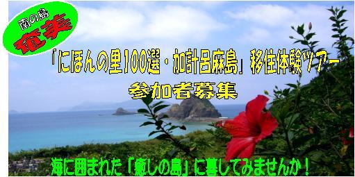 b0177163_17403179.jpg