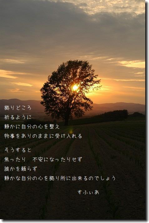 b0152416_15114697.jpg