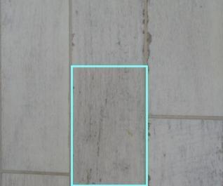 f0237116_20535791.jpg