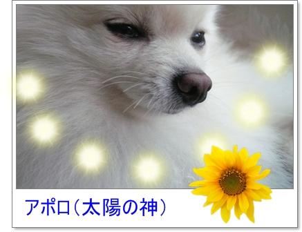 b0167519_9144197.jpg