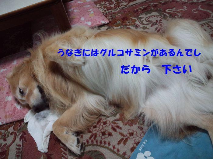 b0127531_2225347.jpg