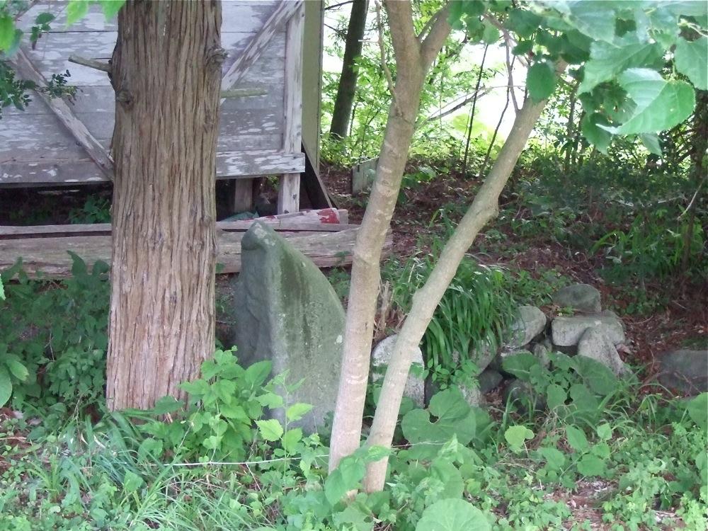 道すがら、謎の神社発見_d0001843_2317193.jpg