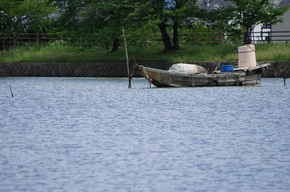 広沢池で空を撮る..._f0152550_22112456.jpg