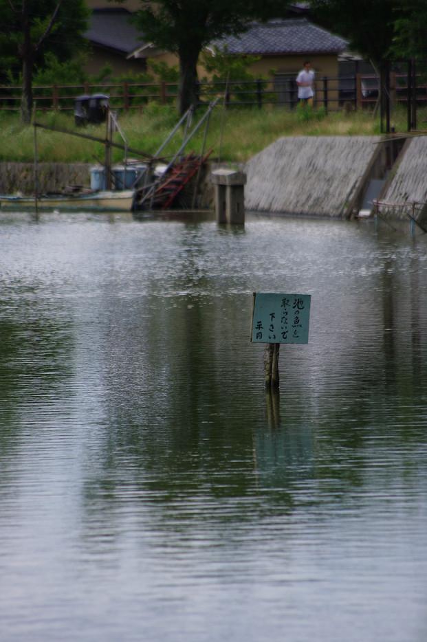 広沢池で空を撮る..._f0152550_2212297.jpg