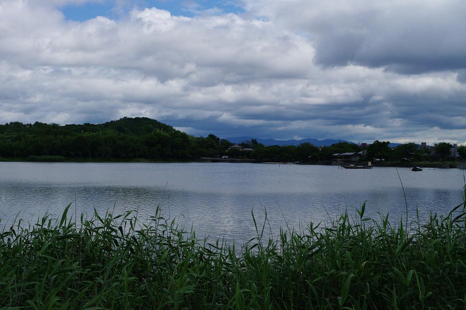 広沢池で空を撮る..._f0152550_229107.jpg