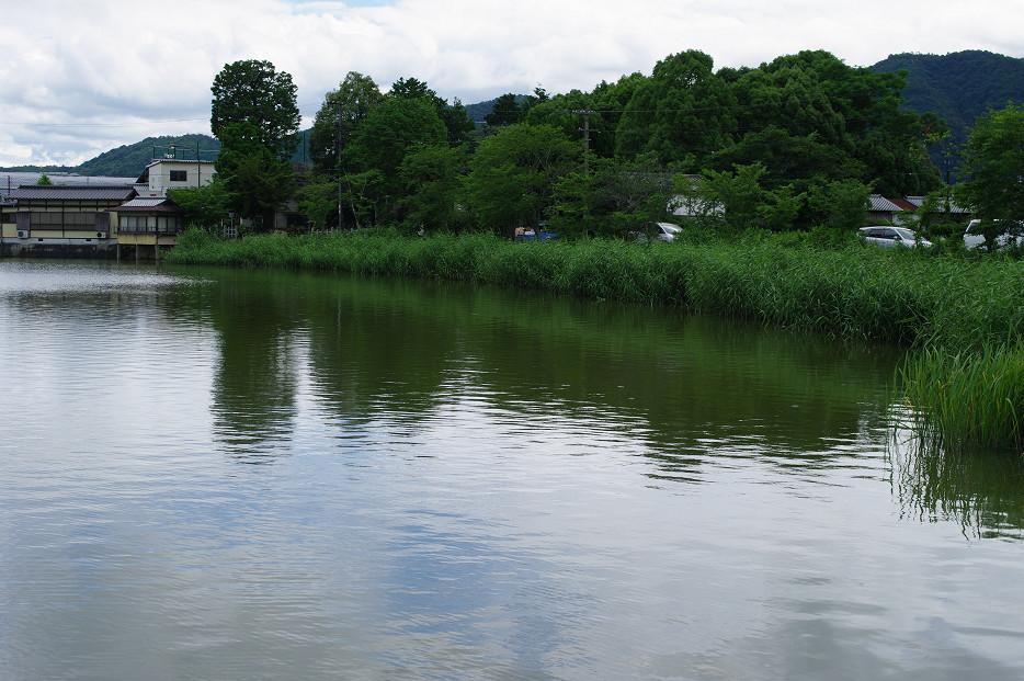 広沢池で空を撮る..._f0152550_2292337.jpg