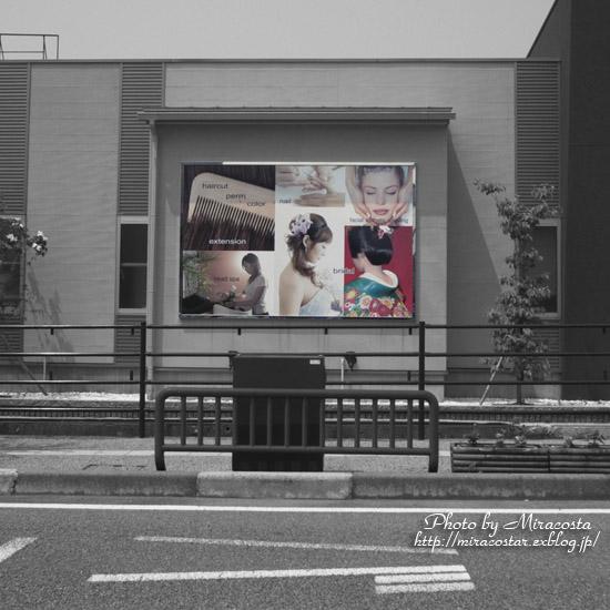 日本の車窓から_e0140159_2116524.jpg