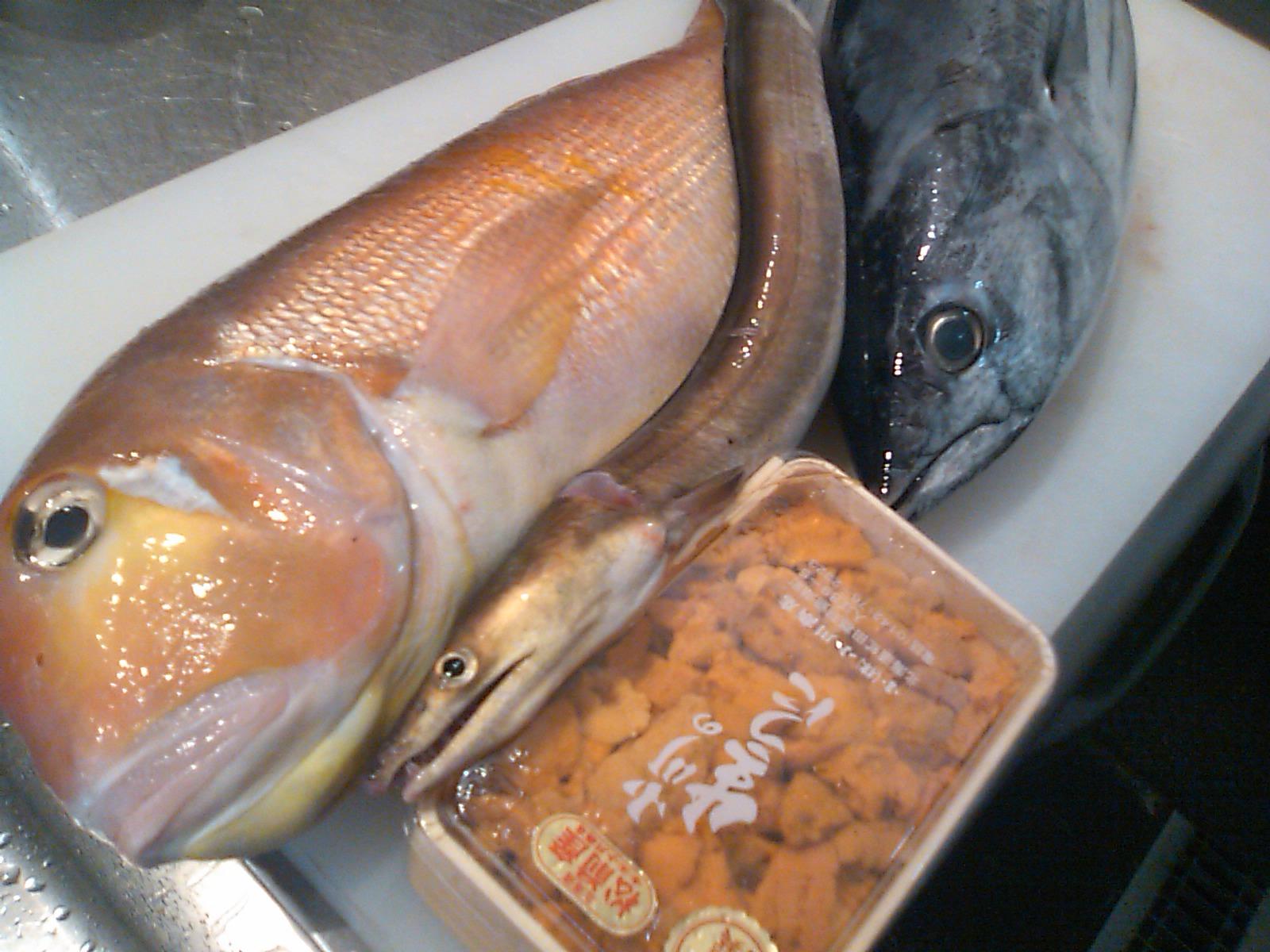 鮮魚_f0187266_1433662.jpg
