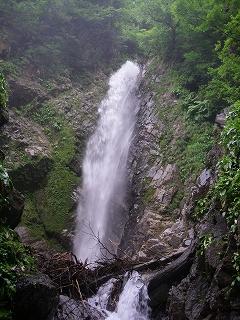 白山山系の渓_e0064783_21394854.jpg