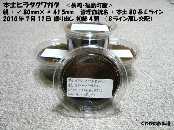 f0183484_9592560.jpg