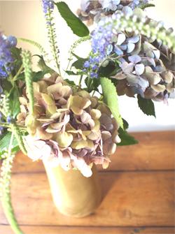 夏に愉しむ、花々。_d0174704_14162127.jpg