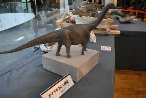 めちゃめちゃ貴重な体験!恐竜化石をクリーニングしてみません?_f0229508_8264511.jpg