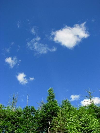 2010年7月16日(金):夏の兆し_e0062415_18142155.jpg