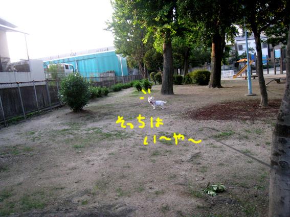 d0134156_15274397.jpg