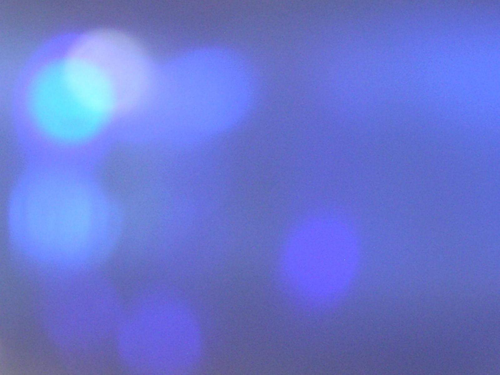 kind  of   Blue ~♪_f0146802_0365871.jpg