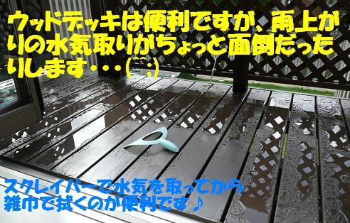 f0121712_15593130.jpg