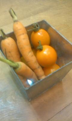 代官山Horyさんの無農薬野菜!_c0209415_19125225.jpg