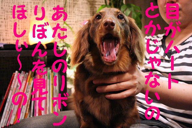 いっぱいあっぷ~♪_b0130018_2049592.jpg
