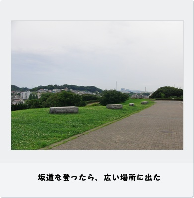 b0098660_1511462.jpg