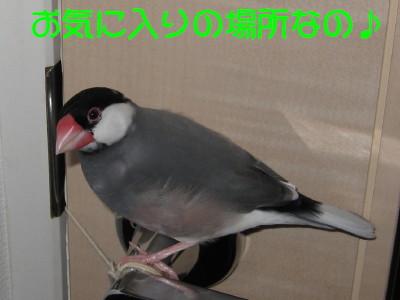 b0158061_21173976.jpg