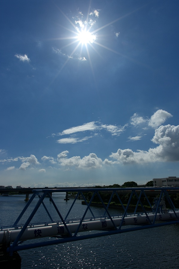 End of the rainy season_d0147676_6113884.jpg