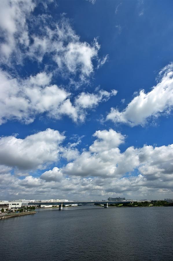 End of the rainy season_d0147676_6123676.jpg