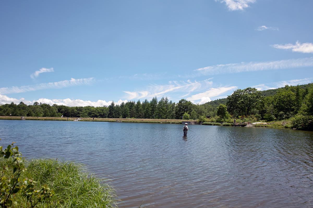 Big trout day_c0095801_17335880.jpg