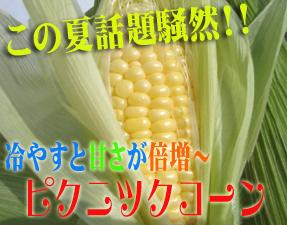 e0066858_752642.jpg