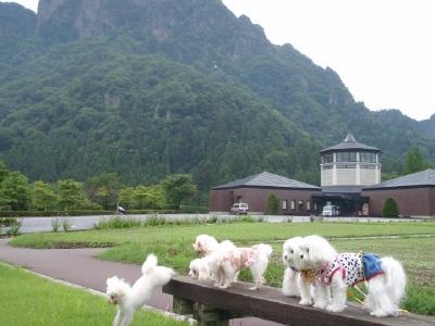 カリファミリー、マミちゃんのお山と軽井沢へ(^^)/_b0001465_13242281.jpg