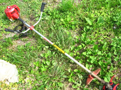 草刈日和…?_f0182936_2316288.jpg