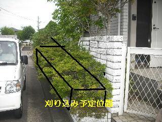 f0031037_18431050.jpg