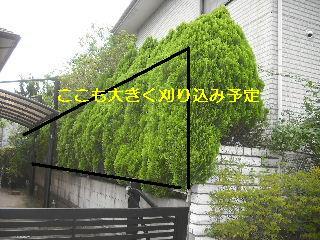 f0031037_18431643.jpg