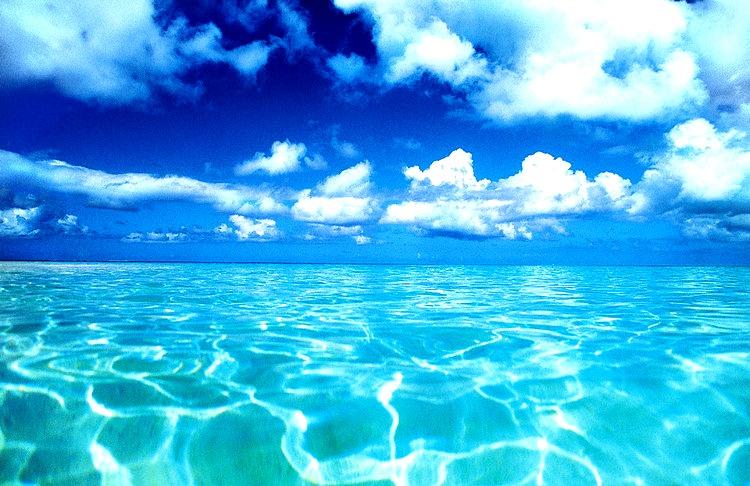 海は広いな大きいな♪_c0156749_1729821.jpg