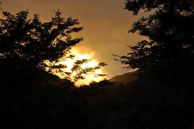 Yakushima戦記2010-二日目-_f0233184_211418.jpg