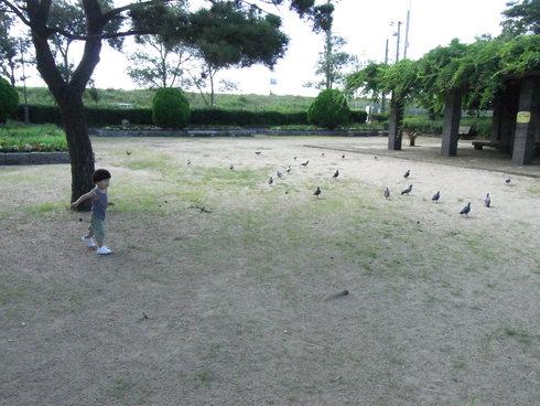 早朝公園。_b0079897_21531411.jpg