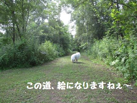 f0212597_7584359.jpg