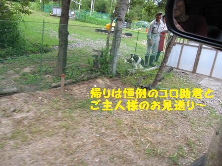 f0212597_8105015.jpg