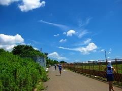5時間走 in 34℃_a0036808_18474186.jpg