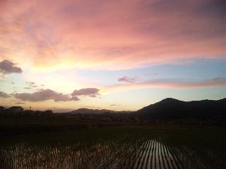 すーごくきれいな夕暮れをみた。_b0126653_11412474.jpg