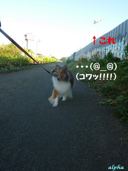 c0189388_16583471.jpg