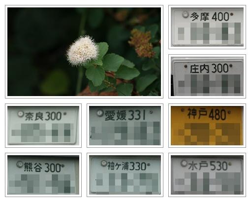 f0146493_22202163.jpg